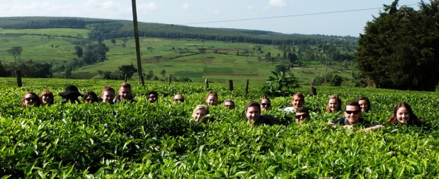 cropped group shot kericho_wide